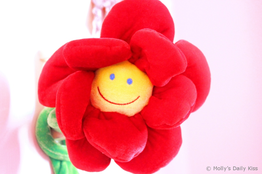 Happy smile flower face