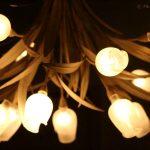Tulip lampshade