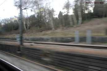 Zooming past on the train