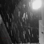 snow falling through the light