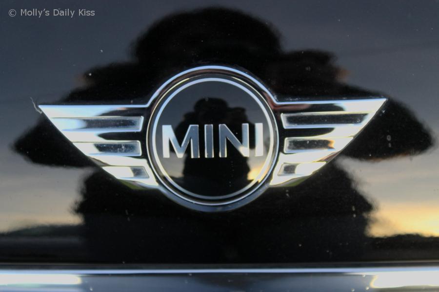 Mini car badge