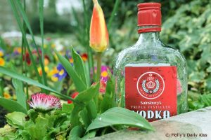 vodka bottle in the flower bed