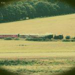 Steam train through Bodiam valley