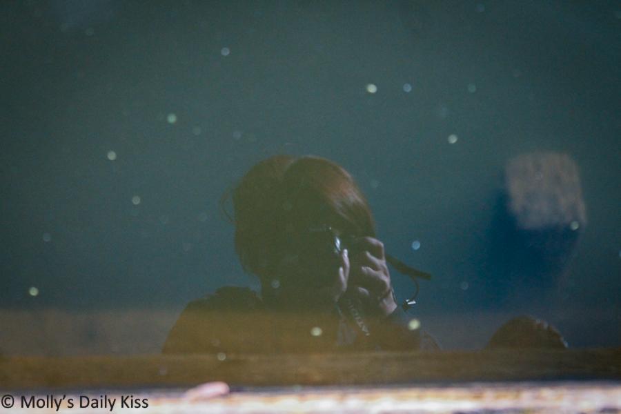 my reflection in stanborough Lakes Hertfordshire