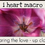 I Heart Macro badge