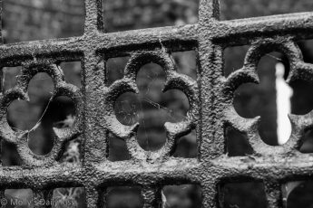Black and white image of a iron gate