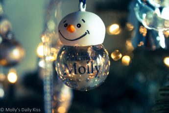 Molly Christmas decoration