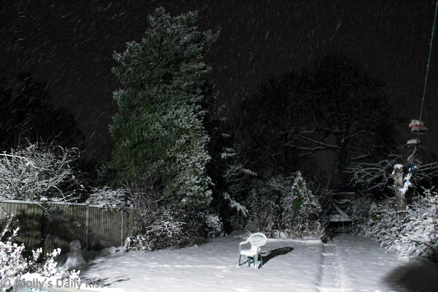 Snow falling at nighttime
