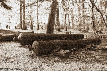 American Revolution Cannons at Valley Forge