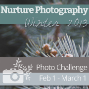 Winter Nurture Photography badge