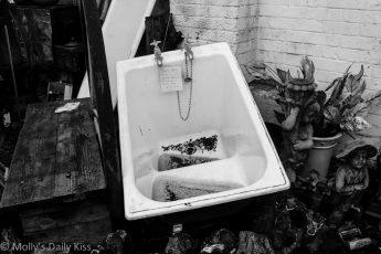 Junk yard bath