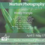 Nurture Spring photography challenge