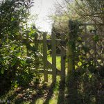 Little garden gate