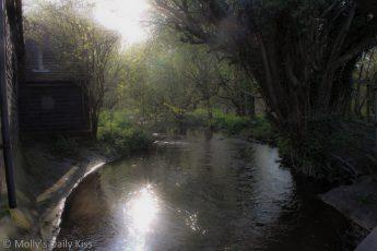 Sunlight sparkle on water