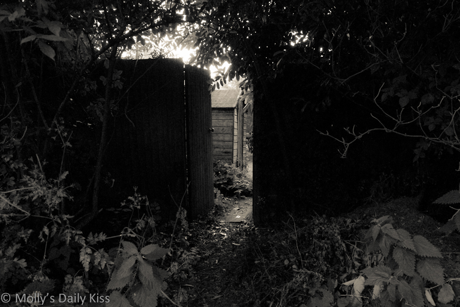 Gate at the bottom of the garden