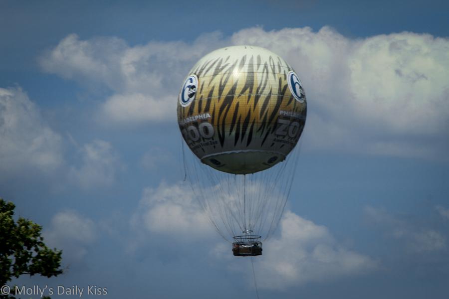 Philadelphia Zoo balloon