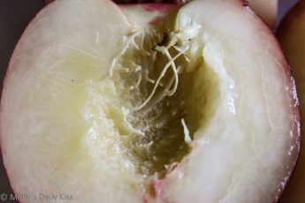 Macro shot of the inside of a nectarine