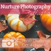 Autumn Photography Challenge badge