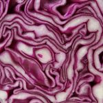 Macro shot of red cabbage