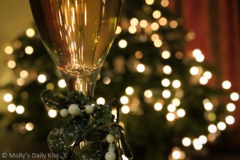 Wine and mistletoe with christmas tree