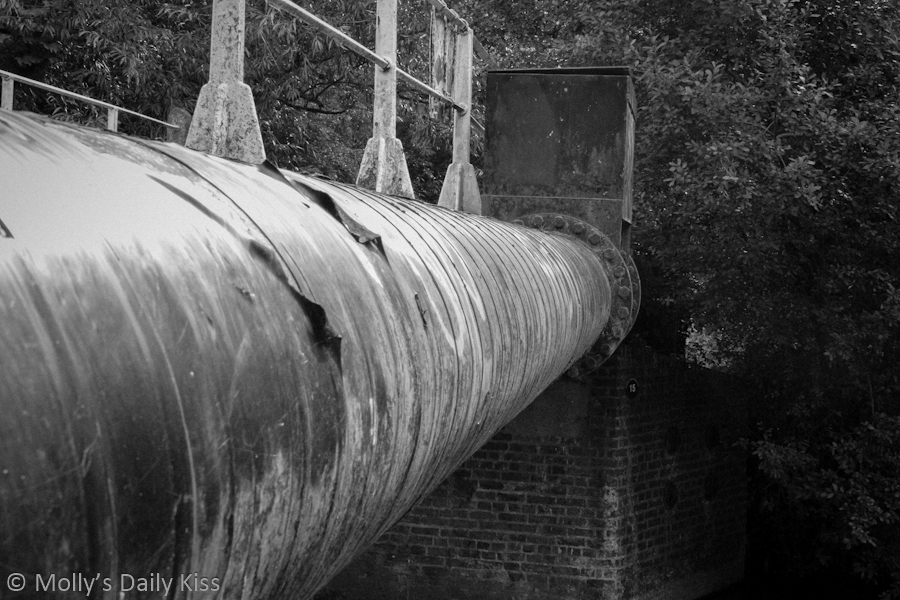 Watertube black and white