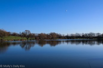 Stanborough lake in winter reflection