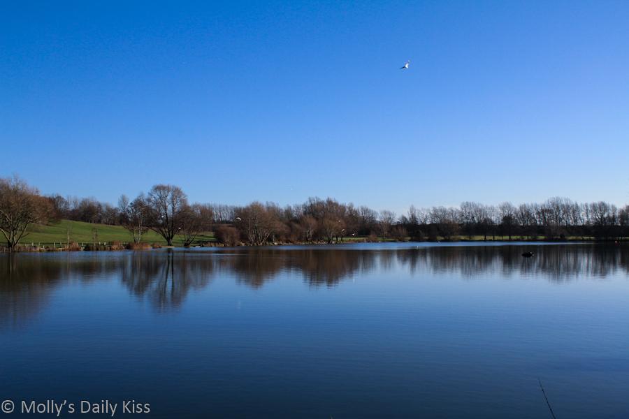 Stanborough lake in winter reflection