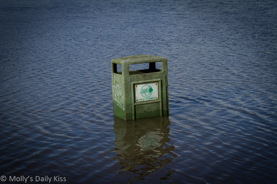 Flooded trash can