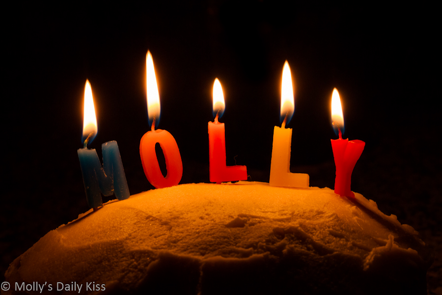Molly candles on a cake