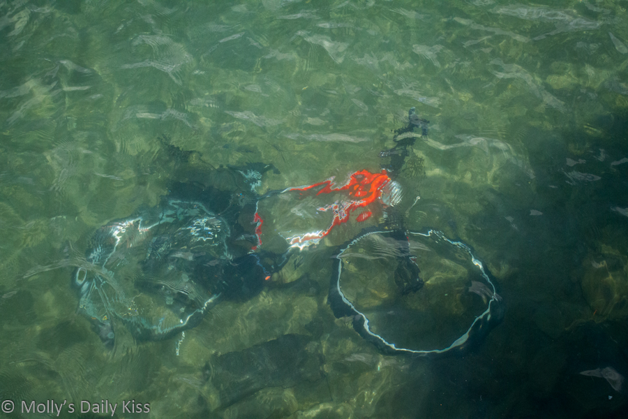 Bike underwater in river