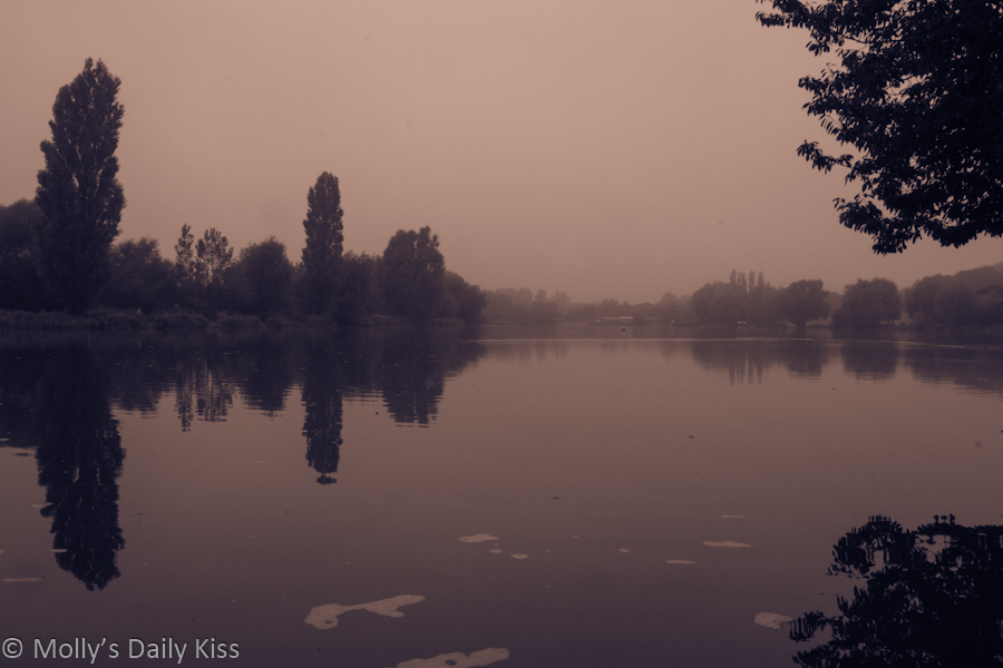 Stanborough lakes in the mist