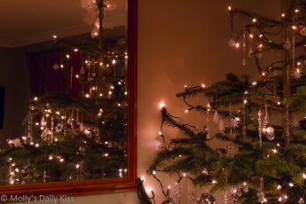 Christmas tree reflected in mirror