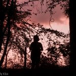 Silhouette of fairy in woodland