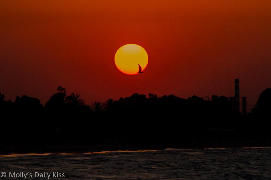 Sunset over Tunisia beach