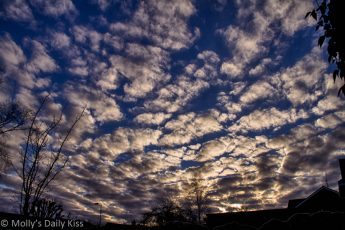 Cloud ripples in the winter sky