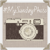 My Sunday Photo badge