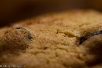 Macro shot of chocolate chip cookie