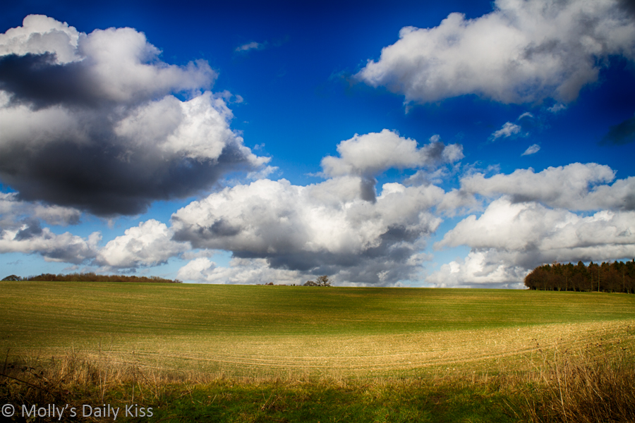 Blue sky with white fluffy clouds over green fields