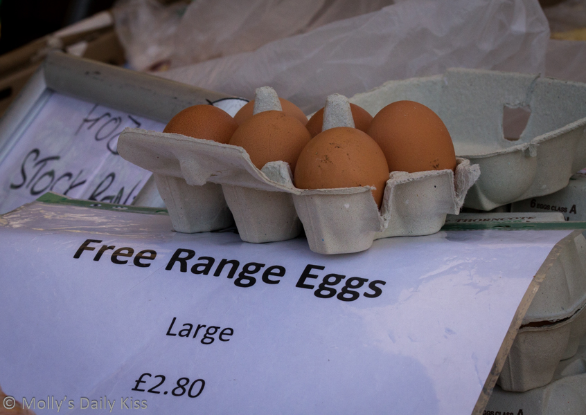 Free range eggs Hatfield farmers market