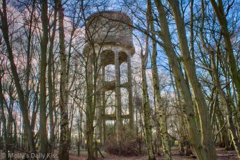 Water tower in the woods