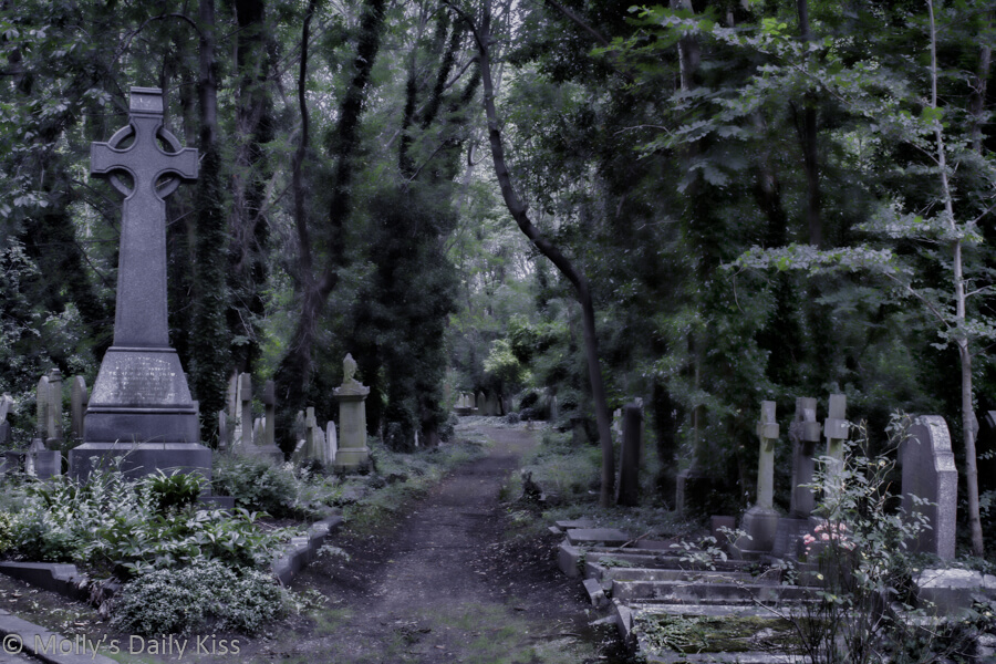 Highgate Cemetary pathway through the graves edited in Topaz Fusion