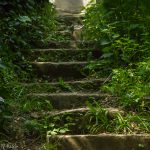 steps in the countryside