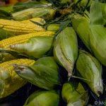 Corn on the cob Reading Terminal Market