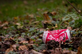 coke can rubbish in the woods