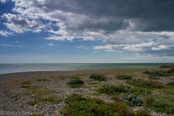 Brighton beach near the Marina