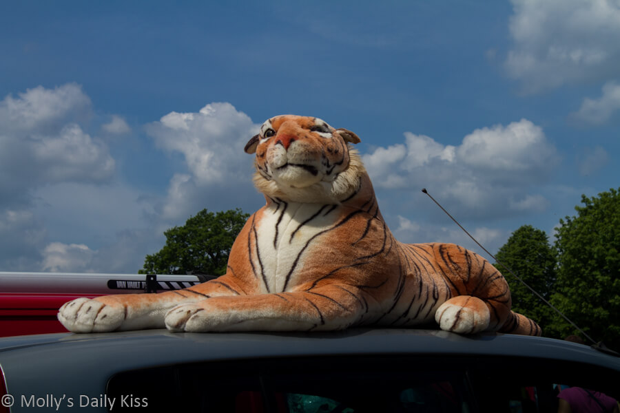 Stuffed tiger on roof of car