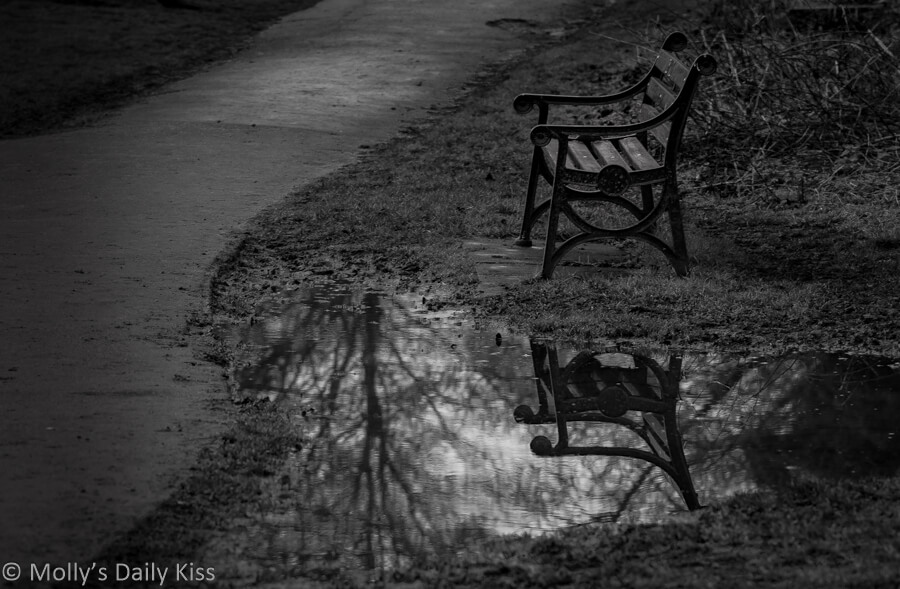 solitary bench reflected in a puddle in black and white