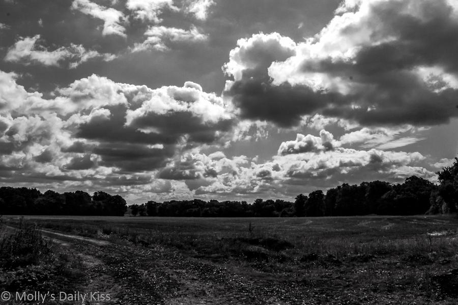 Dark clouds over field black and white UK referendum