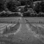 Black and white of english countryside pathway fields ordinary paradise