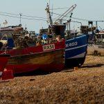 Fishing fleet on the beach at Hastings Fish
